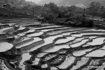 Rice terraces in the mountains of Lao Chai, near Sapa in northern Vietnam