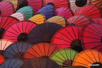 Colourful umbrellas in a Luang Prabang (Laos) street
