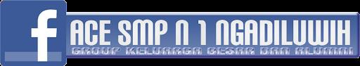 face SMP N Q