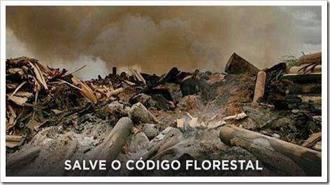 Salve o Código Florestal urgente!