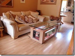 3chf2200_coffee_table_beech-495x371