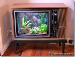 tv-aquarium
