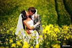 свадебные фото свадебный фотограф свадебная фотосъемка фотосессия свадебной прогулки