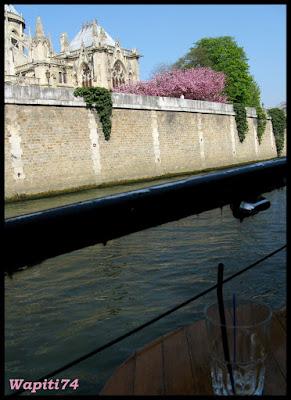 Une semaine printannière à Paris 43bis-Notre-Dame