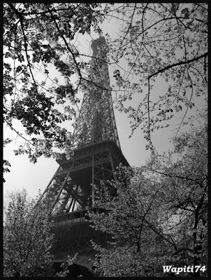 Une semaine printannière à Paris 65.Tour-Eiffel2