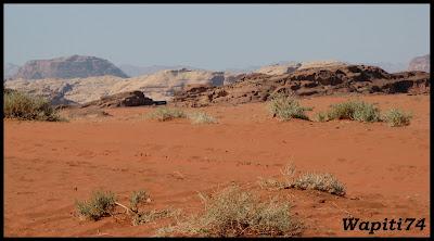 Jordanie : au pays des Nabatéens, des Grecs, des Croisés... et de Dame Nature ! Wadi%20Rum%20333