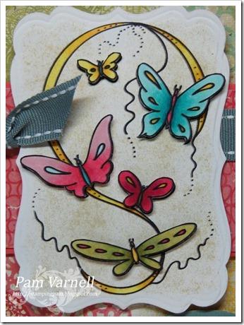Butterfly-Swirls-1a