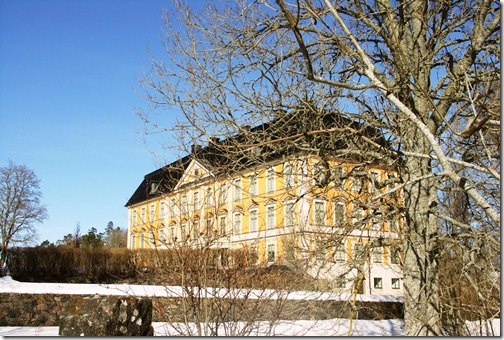nynäs castle