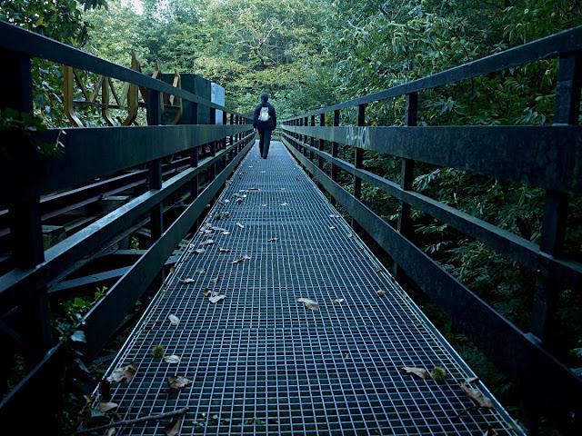 Puente del Tren Minero