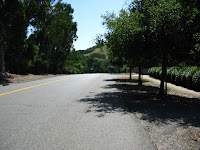 Foothill Bell Ride Logged 034.JPG