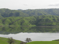 cal res 003.JPG Photo