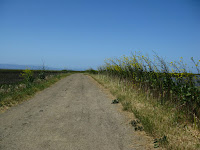 Home to Alviso Loop Logged 086.JPG