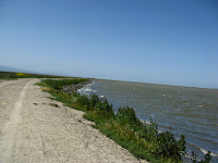 Home to Alviso Loop Logged 116.JPG Photo