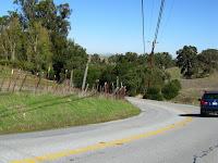 Foothill Short Logged 015.JPG