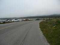 Pacific Grove Trail 281.JPG