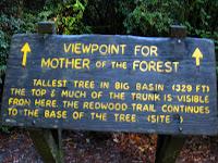 Big Basin Redwoods State Park 086.JPG