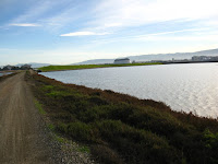 BayLands to BayFront 35M Bike Ride 075.JPG Photo