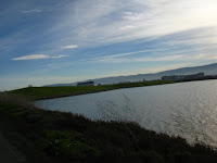 BayLands to BayFront 35M Bike Ride 079.JPG Photo