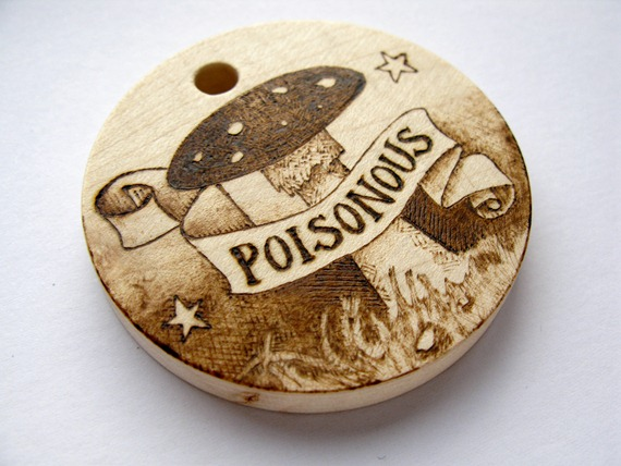 poisonous toadstool 2