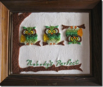 Imperfect Owls Framed