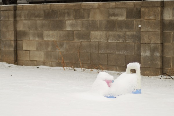 snowplaycar