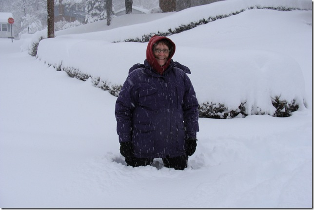 SNOW STORM FEB 6 2010 (32)