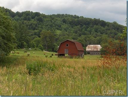 North Carolina 2009 086