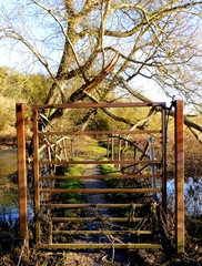 weston trent meadow bridge