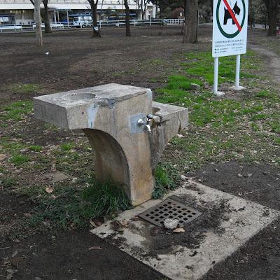 水飲み場:戸山公園(昼)