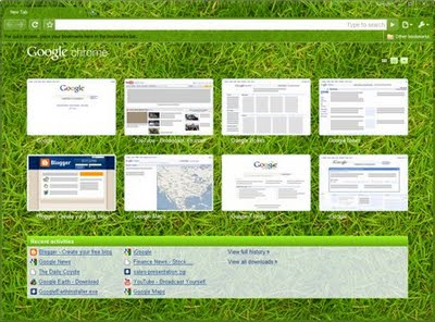 Google Chrome Beta Grass Theme Add a Caption Save CaptionCancel edit Delete caption