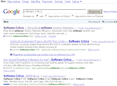 Google results for Software Critics