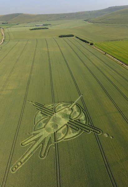 168WansdykePathStantonStBernardWiltshire2ndJuly2009-WheatL2