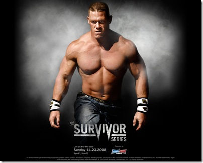 13 Survivor Series 2008