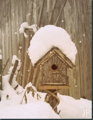 birdhouse in snow wm.jpeg