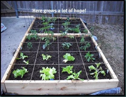 gardening 4 wm.jpeg