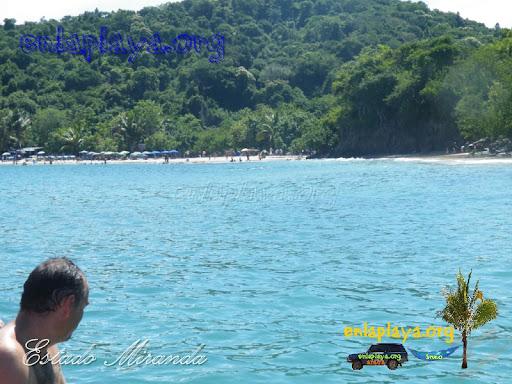 Playa Caribe M117 estado Miranda, Entre las mejores playas de Venezuela