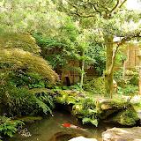 野村さん宅のお庭。マイナスイオンを感じるお庭。