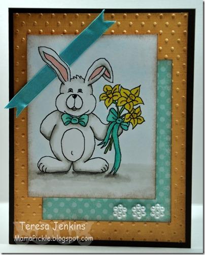 apr2011 rabbit