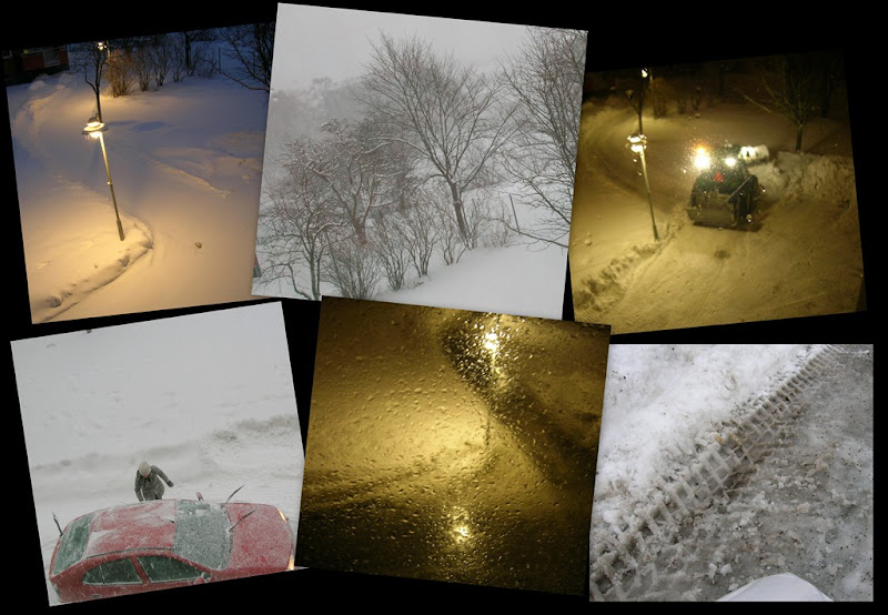 2011-01-09 collage, snow, thaw
