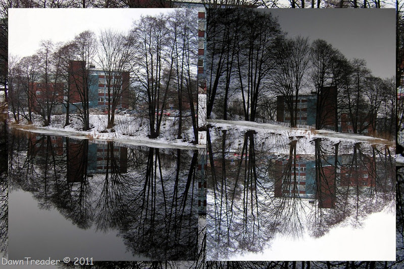 2011-01-18 thaw; river; reflection