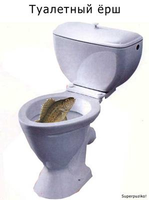 Туалетный ёрш