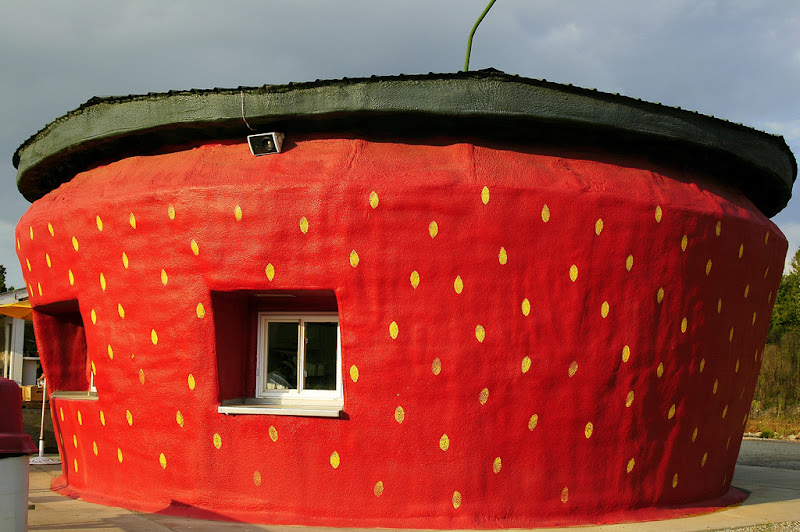 18.%20Strawberry%20House.jpg