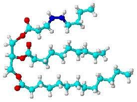 triglyceride_molecule2