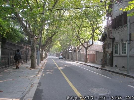 上海,思南路兩旁種滿了法國梧桐,清風徐來,樹影婆娑