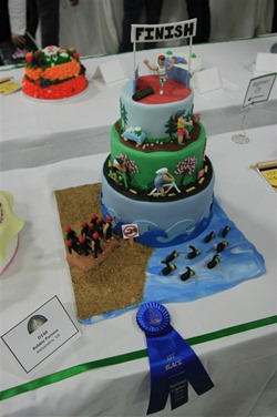 Triathlon Cake: Awards