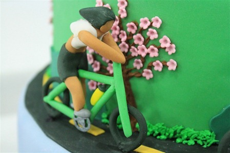 Triathlon Cake: Bike3