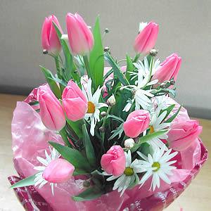 Sinh nhật Duy Long Flower9