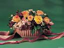 موسوعة رائعة من الورود 5