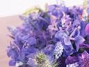 موسوعة رائعة من الورود Flowers-wallpaper%20%282%29