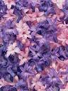 موسوعة رائعة من الورود Pattren%20%2817%29